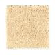 Famous Fair in Lemon Pie - Carpet by Mohawk Flooring