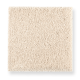 Pleasant Nature in Bare Essence - Carpet by Mohawk Flooring