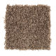 Coral Ridge in Hearth Beige - Carpet by Mohawk Flooring
