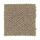 Taste Of Luxury in Cobblestone - Carpet by Mohawk Flooring