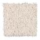 Stylish Beauty in Stellar - Carpet by Mohawk Flooring