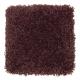 Sensible Style II in Blackberry Wine - Carpet by Mohawk Flooring