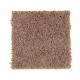 High Hand in Dried Peat - Carpet by Mohawk Flooring