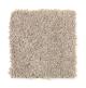 Brookfield Heights in Dewdrop - Carpet by Mohawk Flooring