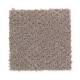 Hidden Treasure in Mocassin - Carpet by Mohawk Flooring