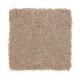 Beautiful Desire II in Dash O'spice - Carpet by Mohawk Flooring