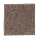 Eternal Allure II in Burnished Brown - Carpet by Mohawk Flooring