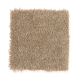 Iconic Idea Solid in Whole Grain - Carpet by Mohawk Flooring