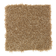 Forever Famous in Soft Bamboo - Carpet by Mohawk Flooring