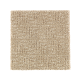 Distinctive Nature in Hearth Beige - Carpet by Mohawk Flooring