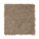 Instant Classic in Mocha Swirl - Carpet by Mohawk Flooring