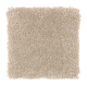 Delightful Cheer in Jute - Carpet by Mohawk Flooring