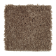 Rare Details in November Foliage - Carpet by Mohawk Flooring