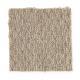 Sun River in Balsa - Carpet by Mohawk Flooring
