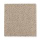 Calming Nature in Shorescape - Carpet by Mohawk Flooring