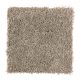 Tempting Example in Weathered Wood - Carpet by Mohawk Flooring