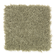 Social Circle in Olive Haze - Carpet by Mohawk Flooring
