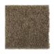 Smart Color in Sassafras - Carpet by Mohawk Flooring