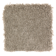 Classic Attraction in Winter Leaf - Carpet by Mohawk Flooring