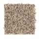 Denali Bluffs in Safari Tan - Carpet by Mohawk Flooring