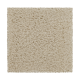 Burnout in Beach Pebble - Carpet by Mohawk Flooring