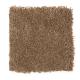 Comfortable Creation II in Mocassin - Carpet by Mohawk Flooring