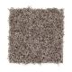Flawless Design in Winter Delta - Carpet by Mohawk Flooring