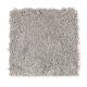 Emerging Image I in Silver Lining - Carpet by Mohawk Flooring