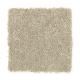 Stylish Story II in Silk Grass - Carpet by Mohawk Flooring