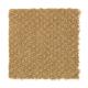 Unification in Sunrise - Carpet by Mohawk Flooring