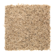 Palmetto Point Fleck in 06 F - Carpet by Mohawk Flooring
