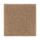 Absolute Elegance II in Glazed Ginger - Carpet by Mohawk Flooring