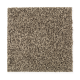 Hampton Isle in Dried Moss - Carpet by Mohawk Flooring
