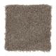 Sensible Style II in Pecan Bark - Carpet by Mohawk Flooring