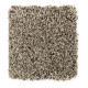 Subtle Influence II in Dakota - Carpet by Mohawk Flooring