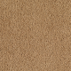 Wish Come True in Golden Charm - Carpet by Mohawk Flooring
