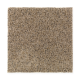Sunsations in Fawn Beige - Carpet by Mohawk Flooring