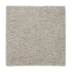 Relaxed Comfort I in Cashew - Carpet by Mohawk Flooring