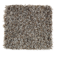 Subtle Influence II in Pewter - Carpet by Mohawk Flooring