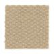 Greenhurst in Apple Butter - Carpet by Mohawk Flooring