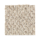 Zanzibar II in Fawn - Carpet by Mohawk Flooring