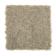 Seaboard in Ostrich - Carpet by Mohawk Flooring