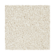 Inviting Charisma in Balsam Beige - Carpet by Mohawk Flooring