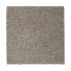 Calming Promise in Urban Putty - Carpet by Mohawk Flooring
