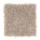 Living Legacy in Birch Bark - Carpet by Mohawk Flooring