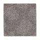 Polished Trellis in Laurel Woods - Carpet by Mohawk Flooring