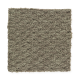 Sun River in Eucalyptus - Carpet by Mohawk Flooring