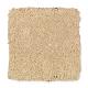 Comfortable Creation II in Natural Grain - Carpet by Mohawk Flooring