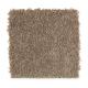 Edgewood Estates in Cavern - Carpet by Mohawk Flooring