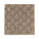 True Match in Mushroom - Carpet by Mohawk Flooring